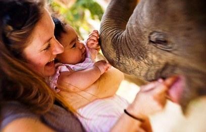 Child and Baby Elephant, India