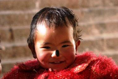 Himalayan Baby 2010