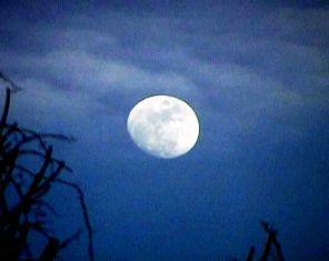 Full Moon Dharamsala India