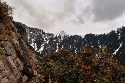 Dharamsala Snow