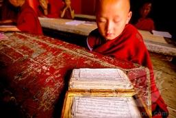 Monastery Buddhist Studies
