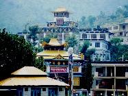 Tipa School, Dharamsala