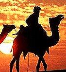 Desert of India