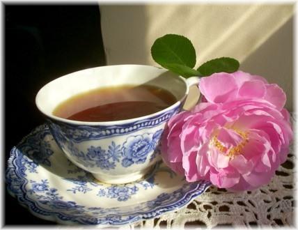 Cup of Tea, Dharamsala