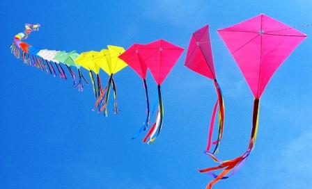 Kite Flying Passion India